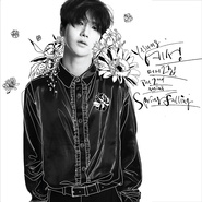 Spring Falling – The 2nd Mini Album