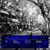 ITB - Meat & Bone Mix - ZEAN & Friends
