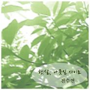 全素妍《阳光, 穿过树叶》 - yy - yznc