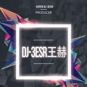 DJ王赫(3esr)