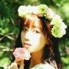 绽放的蔷薇0076