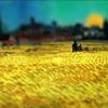 拾麦子的稻草人