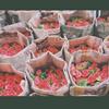 草莓味的草莓蛋糕卷