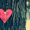 关于爱情每个人都有话说。