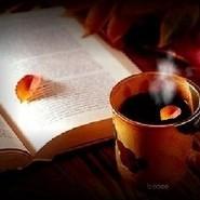 午后安静的阅读时光(第一辑)