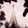 Worship --2