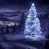 【圣诞主题】圣诞节的香气   Merry Christmas