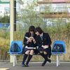 日本纯爱电影主题曲精选
