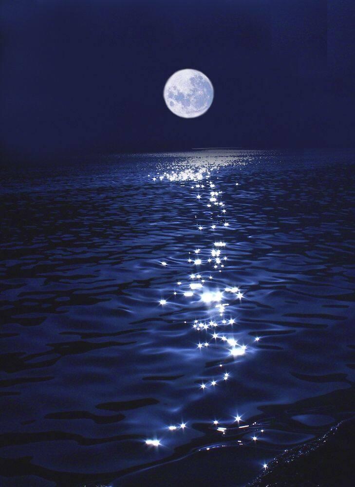 海上的月亮