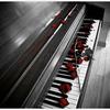 钢琴后摇,风中摇摆的白日梦