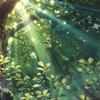 小清新之森林之歌
