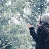 『在最寒冷的季节里,有最动听的声音』——此曲听尽,温暖冬眠