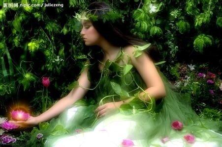 宛如森林中的精灵在吟唱---他们的声音清澈干净、随风飘荡(欧美)