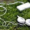 my music--外文
