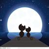 月圓夜,聽人間悲歡離合的故事。