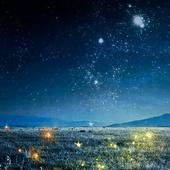 Sleepless Starlight