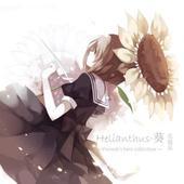 Helianthus·葵