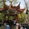 60分钟,我的城市- 昆明 | 60 Minute Cities- Kunming