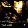 TANG.MUSIC 琴