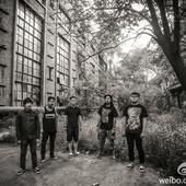 IP9乐队
