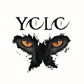 Yolo乐队