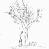 时目老树俱乐部
