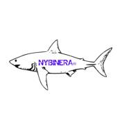 49NybinEra
