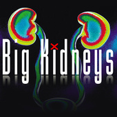 Big Kidneys