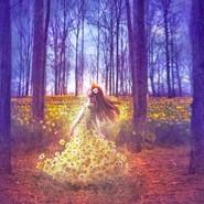 【钢琴】蓝色森林 徘徊怅惘