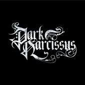 Dark Narcissus